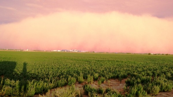 arizona-dust-storm-7-3-2014
